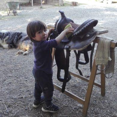 Attività didattiche per bambini
