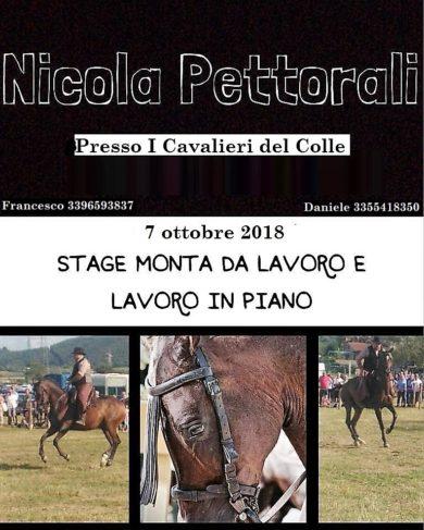 Monta da lavoro con Nicola Pettorali 21 Ottobre